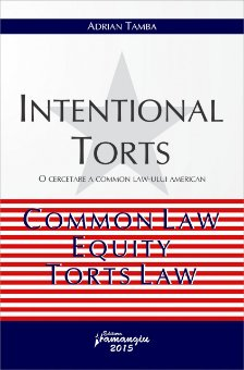 Imagine Intentional torts. O cercetare a Common Law-ului American. Common Law, Equity, Torts Law