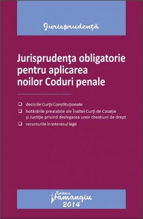 Imagine Jurisprudenta obligatorie pentru aplicarea noilor Coduri penale