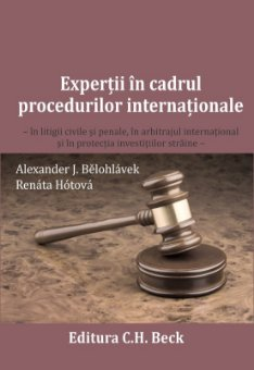 Imagine Expertii in cadrul procedurilor internationale