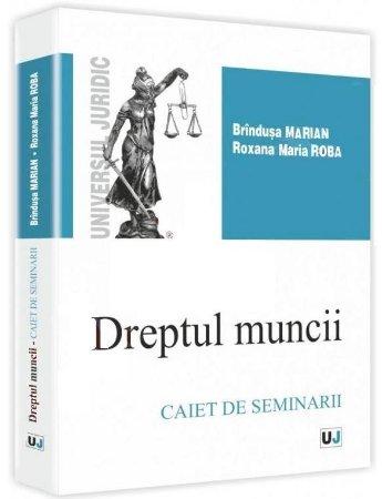 Imagine Dreptul muncii. Caiet de seminar