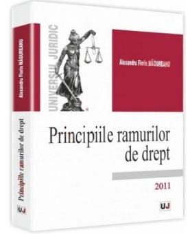 Imagine Principiile ramurilor de drept