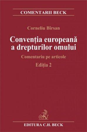 Imagine Conventia europeana a drepturilor omului. Comentariu pe articole