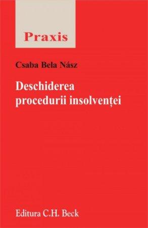 Imagine Deschiderea procedurii insolventei