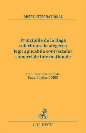 Principiile de la Haga - Radu Bogdan Bobei