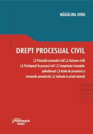 Drept procesual civil - Madalina Dinu